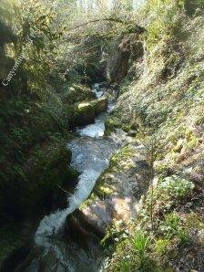 Canyon Grenant